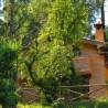 Casa Rural Ermita Santa María de la Sierra