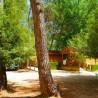 Camping Rural Los Llanos de Arance